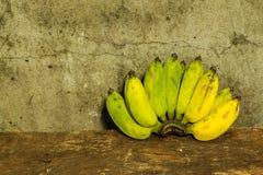 Ainda vida - bananas Foto de Stock Royalty Free