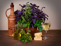 Ainda vida bonita com manjericão, aipo, aneto, manjerona, salsa, alface; queijo e vinho Fotografia de Stock Royalty Free