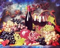 Ainda vida bonita com vidros de vinho, uvas, romã vin Imagem de Stock Royalty Free