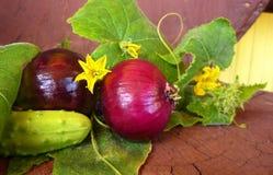 Ainda vida; cebolas vermelhas nas folhas do pepino Fotografia de Stock Royalty Free