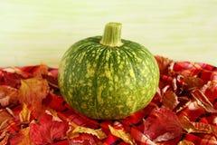 Ainda vida com a abóbora verde com as folhas de outono secas em uma toalha quadriculado em um fundo de madeira verde Fotos de Stock