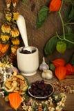 Ainda-vida com almofariz, frutos secos e flores Imagens de Stock Royalty Free