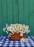 Ainda vida com as flores da margarida no vime Imagens de Stock