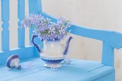 Ainda vida com as flores da mola no banco Imagem de Stock Royalty Free