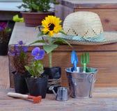 Ainda vida com as flores em plantar potenciômetros, chapéu de palha e ferramentas de jardim na cubeta bonito Imagens de Stock