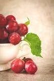 Ainda vida com as uvas vermelhas no copo branco do vintage Fotografia de Stock
