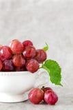Ainda vida com as uvas vermelhas no copo branco do vintage Imagem de Stock Royalty Free