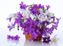Ainda vida com beleza dos peonies das flores fotografia de stock