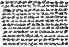 Ainda-vida com cabeças dos peixes Imagens de Stock Royalty Free
