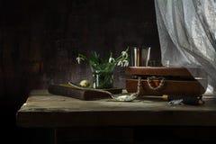 Ainda a vida com caixa de joia, o livro velho e o snowdrop floresce na Fotografia de Stock