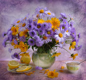 ainda vida com camomiles do lilac Fotografia de Stock Royalty Free