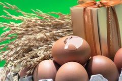 Ainda vida com cascas de ovo e ovos, semente do arroz 'paddy', caixa de presente, fundo colorido Imagens de Stock