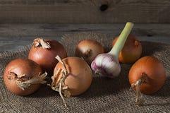 Ainda vida com cebola e alho na tabela de madeira velha Imagem de Stock