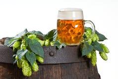 Ainda vida com cerveja Fotos de Stock Royalty Free