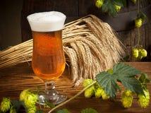Ainda vida com cerveja Fotografia de Stock Royalty Free