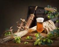 Ainda vida com cerveja e lúpulos Imagens de Stock Royalty Free