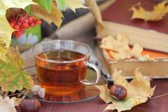Ainda vida com chá, livros e folhas no outono Fotografia de Stock