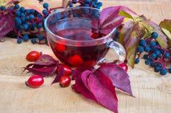 Ainda vida com chá quente das folhas de outono cor-de-rosa do cão Fotografia de Stock