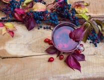 Ainda vida com chá quente das folhas de outono cor-de-rosa do cão Foto de Stock Royalty Free