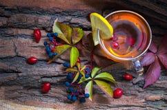 Ainda vida com chá quente das folhas de outono do dogrose e do limão Imagem de Stock