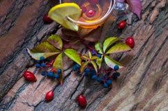 Ainda vida com chá quente das folhas de outono do dogrose e do limão sobre Fotografia de Stock Royalty Free