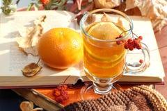 Ainda vida com chá quente na decoração do outono Fotografia de Stock Royalty Free