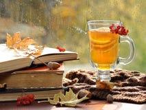 Ainda vida com chá quente na decoração do outono Fotografia de Stock