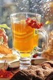 Ainda vida com chá quente na decoração do outono Imagens de Stock