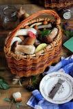 Ainda vida com cogumelos, vista superior Fotos de Stock Royalty Free