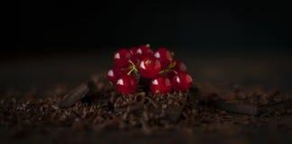 Ainda vida com corintos vermelhos Foto de Stock