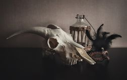 Ainda vida com crânio da ram, máscara e a garrafa velha na obscuridade Fotografia de Stock Royalty Free