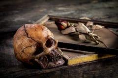 Ainda a vida com crânio e as rosas humanos secou em uma moldura para retrato Foto de Stock
