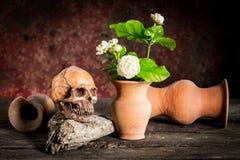 Ainda vida com crânio e o vaso humanos, Foto de Stock