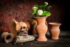 Ainda vida com crânio e o vaso humanos, Fotografia de Stock Royalty Free