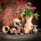 Ainda vida com crânio e o vaso humanos, Fotos de Stock