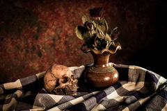 Ainda vida com crânio e vaso, Imagens de Stock