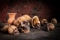 Ainda vida com crânio e vaso, produto de cerâmica Foto de Stock Royalty Free