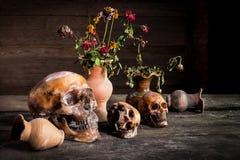 Ainda vida com crânio e vaso, produto de cerâmica Fotos de Stock