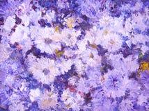 Ainda vida com crisântemos violetas foto de stock