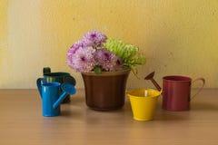 Ainda vida com flor Imagem de Stock