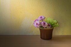 Ainda vida com flor Fotos de Stock
