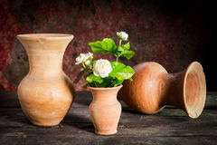 Ainda vida com a flor do jasmim no vaso Fotos de Stock Royalty Free