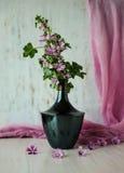 Ainda-vida com flores Fotos de Stock