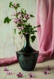 Ainda-vida com flores Foto de Stock Royalty Free
