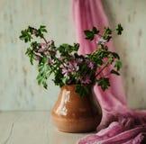 Ainda-vida com flores Imagens de Stock Royalty Free