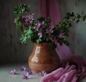 Ainda-vida com flores Fotografia de Stock Royalty Free