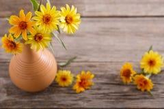Ainda vida com flores amarelas Fotografia de Stock Royalty Free