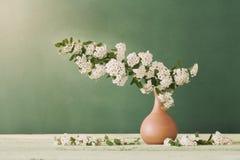 Ainda vida com flores brancas Imagens de Stock Royalty Free