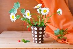 Ainda vida com flores da margarida e o corinto vermelho Fotografia de Stock Royalty Free