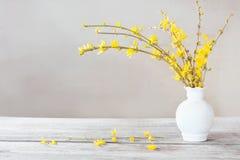 Ainda vida com flores da mola Imagem de Stock Royalty Free